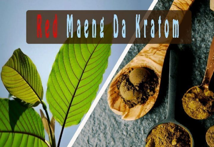 The ABCs of Red Maeng Da Kratom: The Complete Guide
