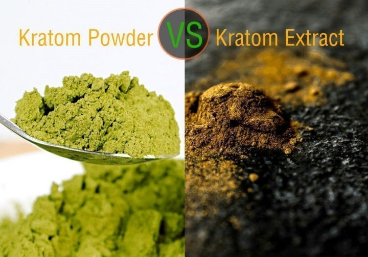 A Look At Kratom Extract Vs Powder